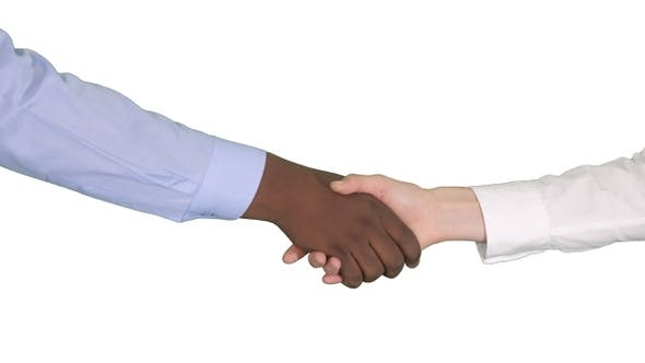 Thumbnail for Handshake of Afro American and caucasian female hands on