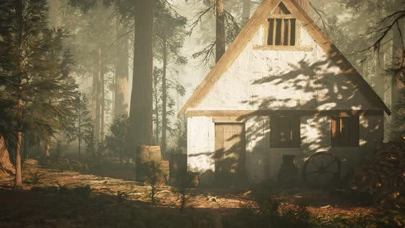 Thumbnail for Old Wooden House in the Autumn Forest