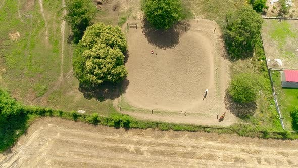 Thumbnail for Aerial View Horse Riding Lesson