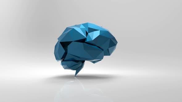 Thumbnail for Brain design