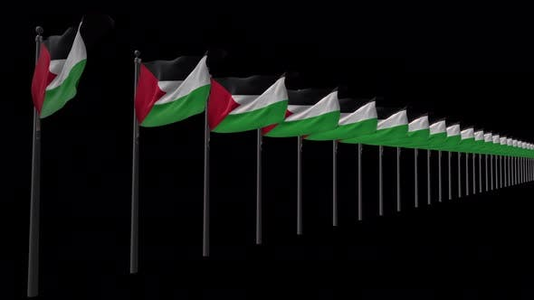Row Of Palestine Flags With Alpha 4K