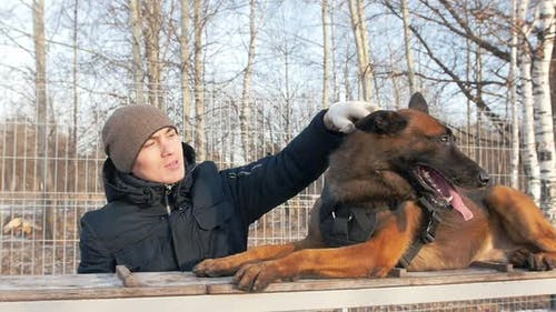 Petting the Dog
