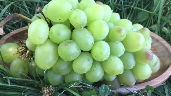 Thumbnail for Green Grapes