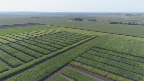 Thumbnail for Aerial view of farm fields
