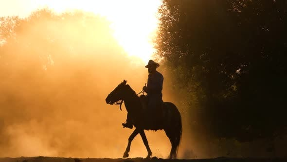 Thumbnail for Cowboy