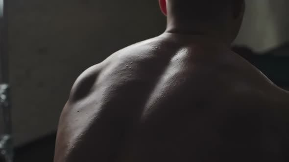 Thumbnail for Strong Back Muscles