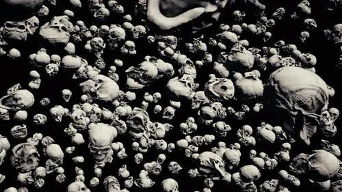 Scary Ancient Skulls 4k