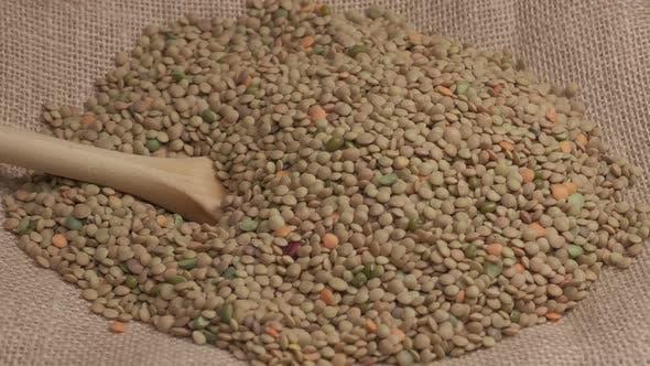 Dry Lentils Legumes