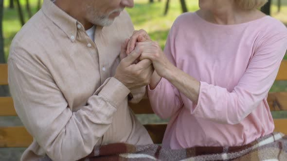 Thumbnail for Happy Senior Couple Embraces in Park Man Kisses Wife Hands, Love Until Old Age