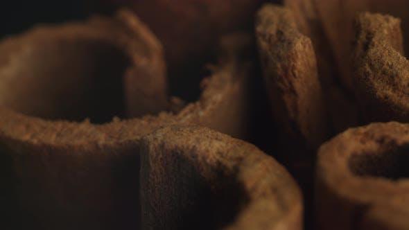 Cinnamon sticks on a dark background