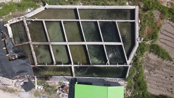Fish Pond Soaring Image Aerial
