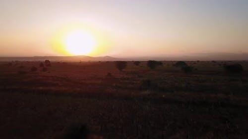 Sunrise over Tanzanian open savannah in Masai Mara, Kenya. 4K
