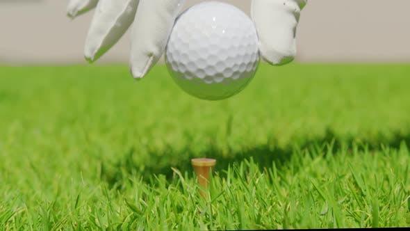 Hand Putting Golf Ball on Green Grass