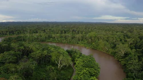 Aerial view of a broad tropical river with a brown coloration