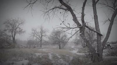 Melancholy Winter Landscape