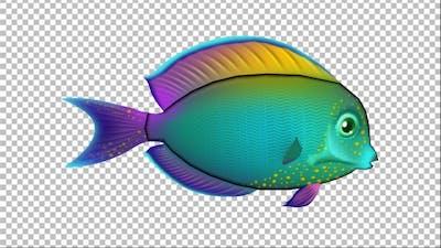 Cartoon Tang Fish Version 06