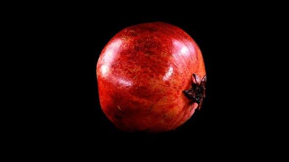 Thumbnail for Pomegranate 7