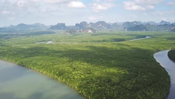 Thumbnail for Mangrove Forest and Rivers in Krabi, Thailand