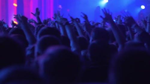 Beim Konzert Kommt Wahnsinnige Energie aus aufgeregten Tanzmusikfans