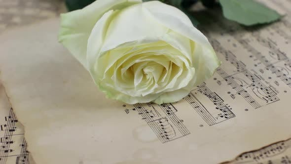 Thumbnail for White Rose And Vintage Sheet Music Rotating