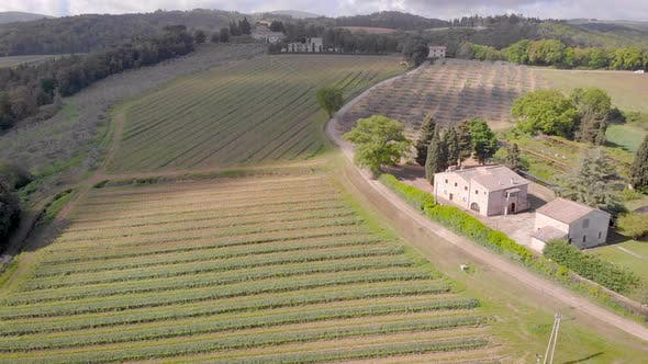 Cover Image for Aerial Shot. Beautiful Italian Tuscany, and Its Vineyards. In the Frame Farm with Fields
