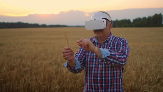 Senior Adult Farmer Uses Virtual Reality for Farming By Holding a Spikelet in His Hands and Pressing