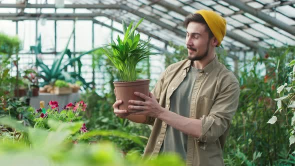 Portrait of Man with Houseplant in Greenhouse