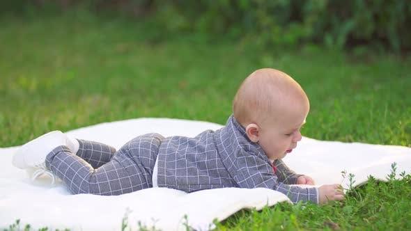 Thumbnail for Little Boy on a Plaid