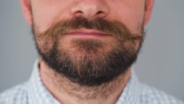 Thumbnail for Part of the Face of a Bearded Man with a Twisted Mustache. He Moves His Mustache