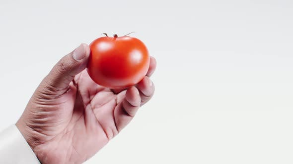 Thumbnail for Hand Holds Ripe Red Tomato 2