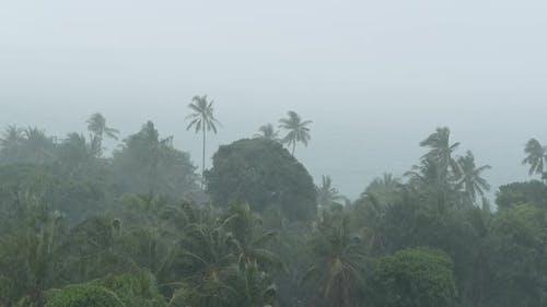 Seaside Landscape During Natural Disaster Hurricane