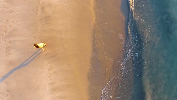 Thumbnail for Young Man Walking on a Virgin Tropical Beach Aerial Drone View
