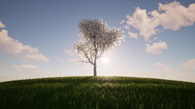 One Tree Growth Ecology Agriculture Concept Environment Nature Spring Season Environmental Green
