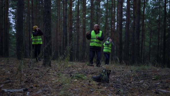 Thumbnail for Group of Volunteers in Green Vests Went in Search of Missing Persons in a Pine Forest