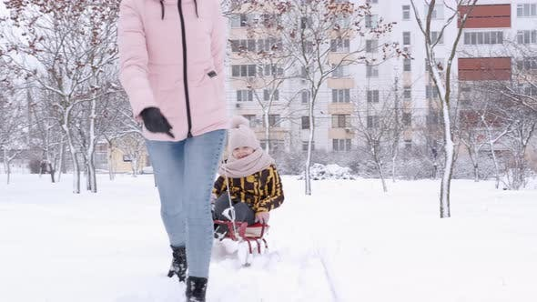 Family Walk with a Sleigh