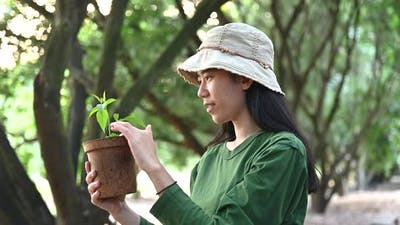Young women planting seedlings The idea of planting trees for the environment : 4k