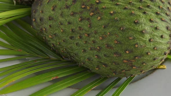 Thumbnail for Closeup of Green Soursop Graviola, Exotic, Tropical Fruit Guanabana on Plate