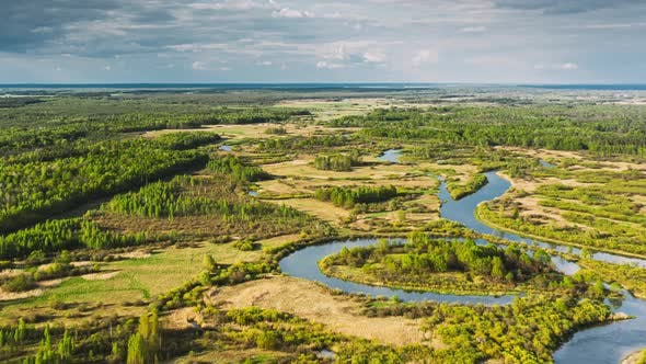 Aerial View Forest Woods And River Marsh In Early Summer Landscape. Top View Of Beautiful European