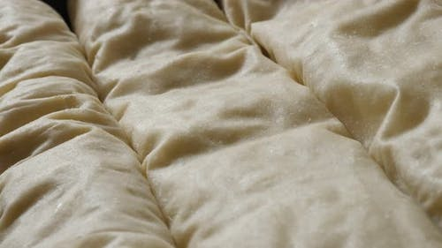 Stuffed thin sheets of dough arranged in baking tray slow pan 4K 2160p 30fps UHD footage - Rolled Se