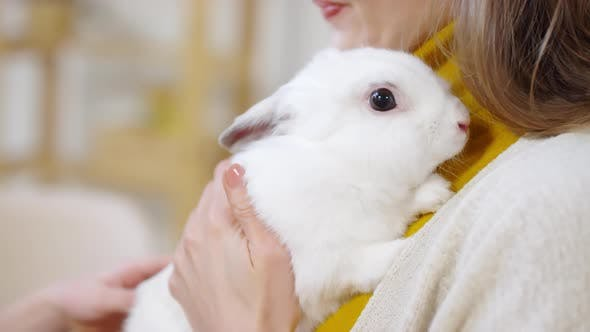 Woman Holding Adorable Bunny