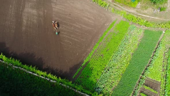 Thumbnail for Man Plowing Field In Spring Season. Beginning Of Agricultural Season