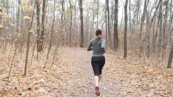 Thumbnail for Sportive Slim Female Trail Running in The Autumn Park Preparing for Competition