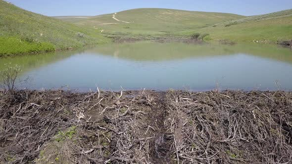 Cover Image for North American Beaver Dam Impoundment Pond in Wyoming Mountains in Summer