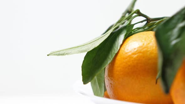 Thumbnail for Pile of Tangerines with Green Leaves