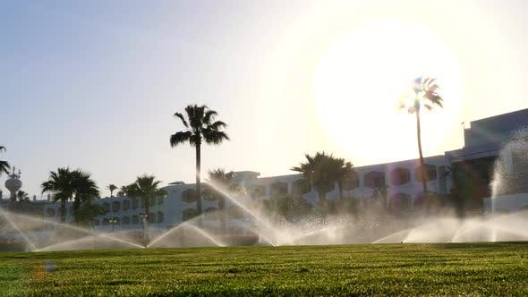 Thumbnail for Beautiful Tropical Landscape: Sprinkler Irrigation System Watering Lawns.