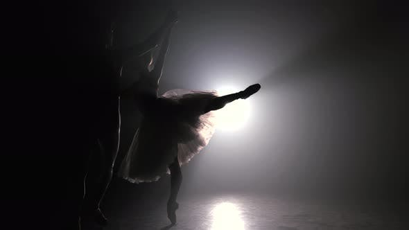 Thumbnail for Professional Ballet Couple Dancing in Spotlights Smoke on Big Stage