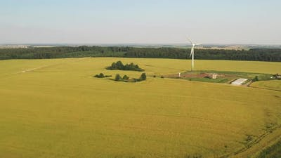 Windmill in the Summer in the Field
