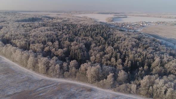 Thumbnail for Winter Landscape in Countryside