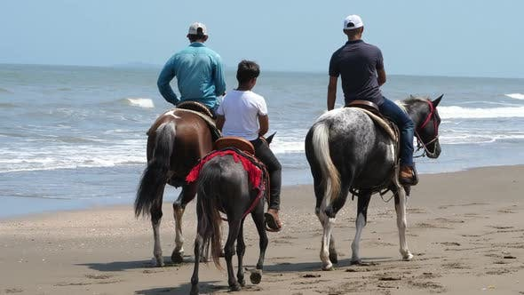 Thumbnail for Country Family Riding Horse on the Seashore Closeup