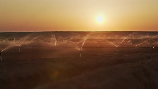 Thumbnail for Irrigation Sprinklers In The Field. Watering The Fields At Sunset
